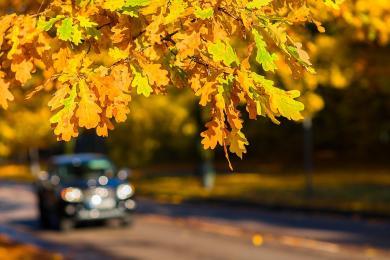 Jesień więcej niebezpieczeństw na drogach niesie...